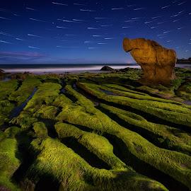 Co Thach Night by Dzung Tran - Landscapes Beaches ( sky, binh thuan, co thach, star, moss, stone, night, bank, beach, tuy phong, rocks,  )