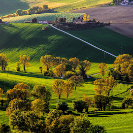 My Hills by Emanuele Zallocco - Landscapes Prairies, Meadows & Fields ( hills )