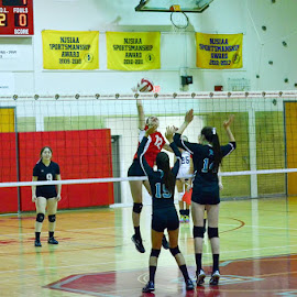 The Hit by Al Koop - Sports & Fitness Other Sports ( volleyball,  )