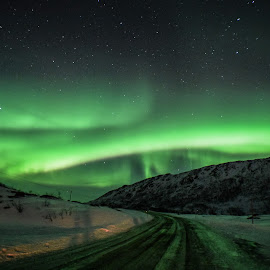 Northern Light in Tromso by E-Den Tan - Landscapes Travel ( aurora borealis, aurora, northern lights, travel, norway )