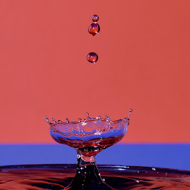 Waterdrop wineglas by Fred Øie - Abstract Water Drops & Splashes ( abstract )
