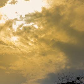 Herald of Storm by Fabio Latorre - Digital Art Places ( angel, herald, high contrast, light, golden )