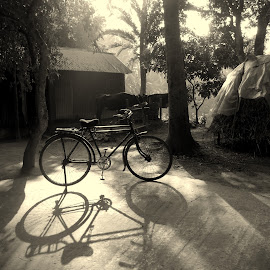 village life  by Asif Mahmud - Transportation Bicycles ( monochrome, village, cow, house, morning, black, shadows )