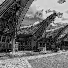 toraja tongkonan home by Hartono Wijaya  - Buildings & Architecture Homes ( home, ethnic, toraja, tribe, traditional, architecture, tongkonan, world heritage, street photography, cultural heritage, sulawesi, indonesia, tradition, culture, travel photography )