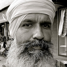SIKH MAN #7 by Doug Hilson - People Portraits of Men ( sikh, punjab, street, turban, beard, india, man, portrait,  )