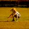 alba fielding.jpg