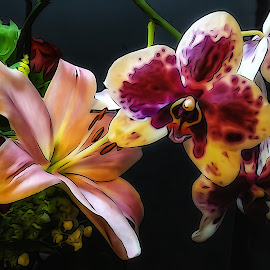 Lilly & Orchid by Dave Walters - Digital Art Things ( nature, orchid, digital art, sony hx400v, lilly )