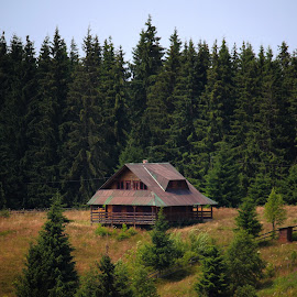 In the woods by Claudiu Petrisor - Buildings & Architecture Homes ( mountains, forrest, green, trees, house )