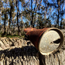 Rusty Can by Lachlan Hudson - Artistic Objects Antiques ( can, bush, decayed, antique, found,  )