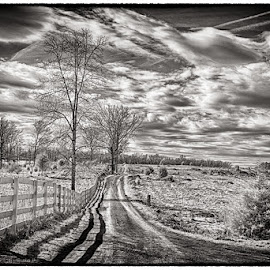 The long trail by Dan Urban - Landscapes Prairies, Meadows & Fields ( nature, black and white, infrared, landscapes, gnmp )