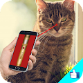 Download Cat Laser Light pointer Joke APK to PC