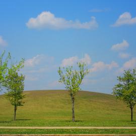 by Alegna Nehc - City,  Street & Park  City Parks