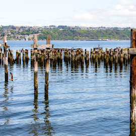 Ruston Way Tacoma Waterfront by Shari Linger - City,  Street & Park  Historic Districts ( waterways, puget sound, tacoma waterfront, tacoma, historic districts, ruston way )
