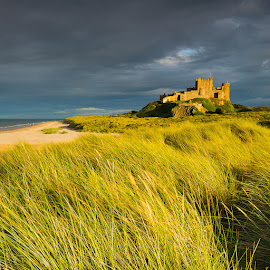 Bamburgh Castle by Martin West - Buildings & Architecture Other Exteriors