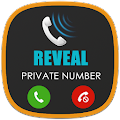 Free Display private number APK for Windows 8