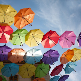 Flying Umbrellas by Tipa Marius - Artistic Objects Other Objects ( timisoara, flying umblelas, marius tipa )