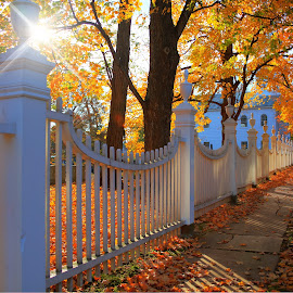 Fall early light by Stephen Goodhue - Buildings & Architecture Places of Worship ( old first church, colonial fence, star sun, first church in old bennington, foliage, orange leaves, vermont )