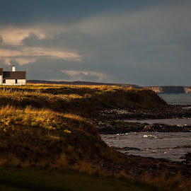 Seaview Cottage by Scott Hay - Landscapes Beaches ( scotland, north sea, white cottage, sea, beach grass, coastal, john o groats, coast,  )