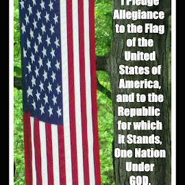 The pledge by Constance S. Jackson - Typography Captioned Photos ( pledge of allegiance, flag, patriotic, red white blue, usa )