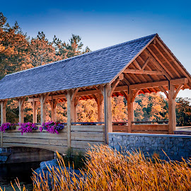 Fall time at the park by Tammy Scott - Buildings & Architecture Bridges & Suspended Structures ( fall colors, park, covered bridge, fall, bridge, landscape )
