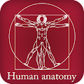 App Human Anatomy apk for kindle fire