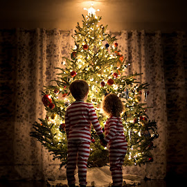 by Mike DeMicco - Public Holidays Christmas ( xmas, silhouette, christmas, children, kids, glow, siblings, cute, love, sweet, tree, happy, decorating, light )