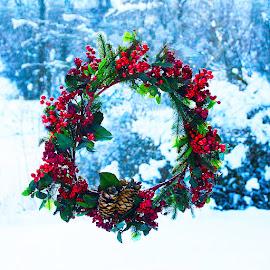 by Jim-Sue Mehrwein - Public Holidays Christmas