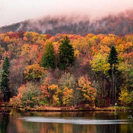 Bear Lake by Pastean Gheorghe - Landscapes Travel ( water, autumn, colors, forest, lake, landscape, rain )