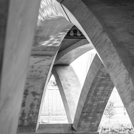 Arches by Charles Shope - Buildings & Architecture Architectural Detail ( water, natural light, black and white, waterscape, outdoor, arches, architectural detail, architecture, bridge, bridges, river )