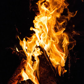 Fire by Allen Wesley - Abstract Fire & Fireworks ( abstract, flames, camping, abstract photography, burning, campfire, fire )