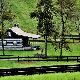 Old Kentucky Home by Bob Welch - Buildings & Architecture Homes ( fence, cabin, tree, fall, kentucky )