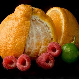 Raspberries, Lime & Orange by Jim Downey - Food & Drink Fruits & Vegetables ( orange, red, lime, black, raspberries )