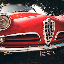 Italian Myth by Nicola Adami - Transportation Automobiles ( myth, italian, cars, alfaromeo,  )