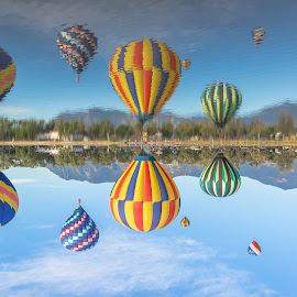 Reflections by Thomas Dilworth - Transportation Other ( water, hot air balloon, colors, festival, colorfull, reflexion )