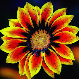 Abstract Flower by Dave Walters - Digital Art Abstract ( abstract, nature, colors, digital art, artistic, flower )
