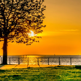 Lake Constance-end of day  by Linda Brueckmann - Landscapes Sunsets & Sunrises