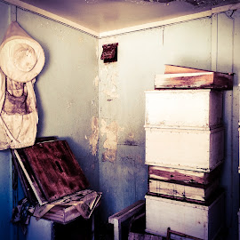 The old beekeepers house by Mathias Hansen - Digital Art Places ( old house, history, old, bee, inside, art, retro, house )