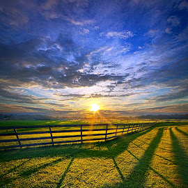 In Harmony by Phil Koch - Landscapes Prairies, Meadows & Fields ( vertical, farmland, travel, yellow, leaves, love, sky, nature, tree, weather, perspective, flowers, light, orange, twilight, art, agriculture, journey, horizon, portrait, fence, environment, dawn, season, serene, trees, lines, natural, hope, inspirational, wisconsin, ray, joy, country living, beauty, landscape, phil koch, spring, sun, photography, farm, country life, horizons, inspired, clouds, office, park, heaven, green, beautiful, scenic, morning, shadows, field, red, blue, sunset, amber, peace, meadow, summer, beam, earth, sunrise, garden )