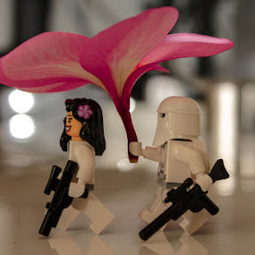Come with me, Snow! by Kèn Nugraha - Artistic Objects Toys ( snow trooper, star wars, minifigure )