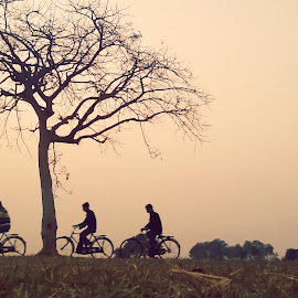 Travel by Sourav Malik - Instagram & Mobile Other ( tree, cycling, silhouettes, travel, people )