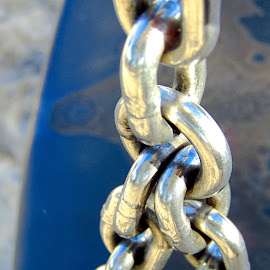 Necessary link by Mark Luyt - Novices Only Macro ( macro, chain, swing, shiny, park )