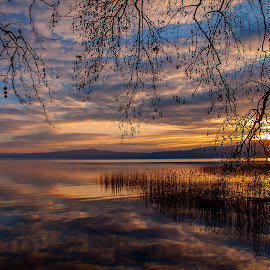 Magic by Robert Panoski - Landscapes Sunsets & Sunrises ( #lake #sunset #water #colors #reeds )