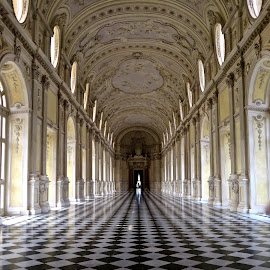 Venaria Reale by Michael Villecco - Buildings & Architecture Architectural Detail