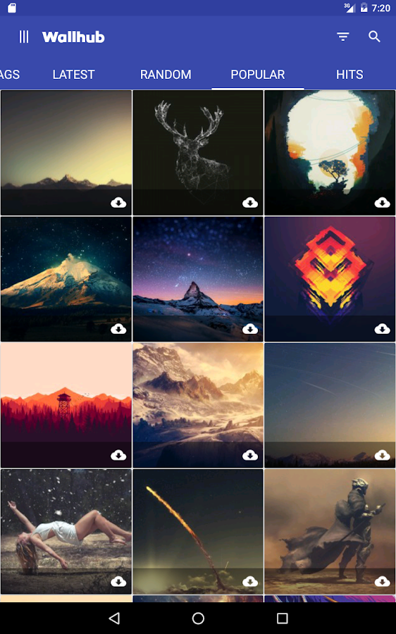 Wallhub Wallpapers Pro Screenshot 8