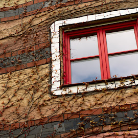 The Window of Imagination by Andrej D - Buildings & Architecture Architectural Detail