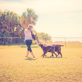 follow me! by Meaghan Browning - Animals - Dogs Playing ( field, following, dogs, girl, together )