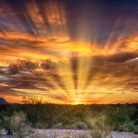Big Rays by Charlie Alolkoy - Landscapes Sunsets & Sunrises ( sky, sunset, arizona, tucson, sunrise, landscape, rays )