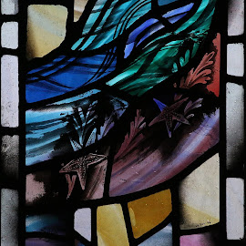 Starfish detail - Leonard Evetts stained glass by Ann Chapman - Buildings & Architecture Places of Worship