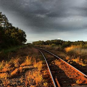 Somewhere in the distance by Libuše Kludská - Landscapes Prairies, Meadows & Fields