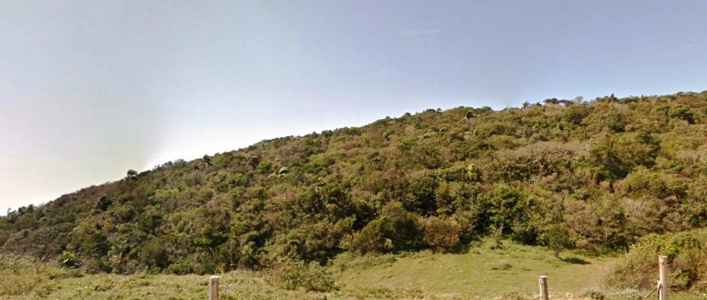 Terreno, Grama, Garopaba (TE0268) - Foto 2